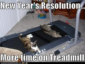 Cheezburger cats make new year's resolution to spend time on treadmill by laying on it.