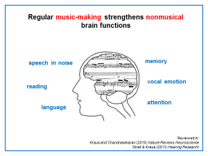 How music strengthens the brain