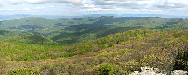 A view of the Shenandoah Valley from a nearby hiking trail