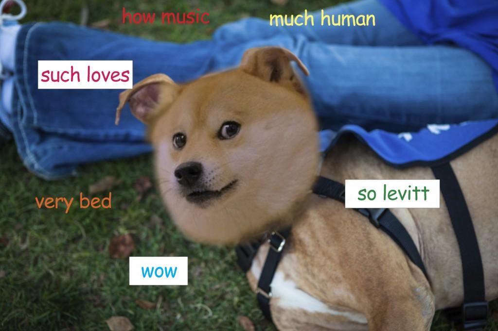 Levitt loves doge