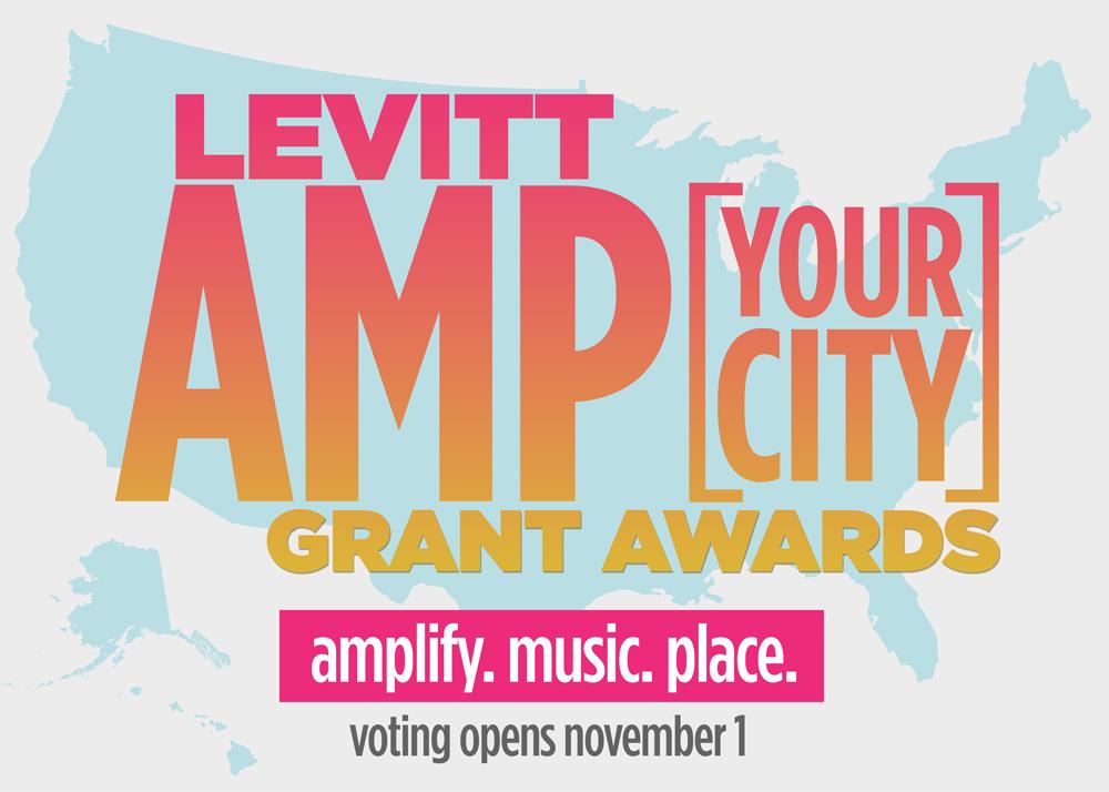 levitt-amp-voting