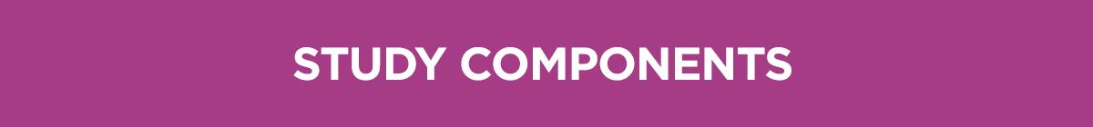 study-components-bar