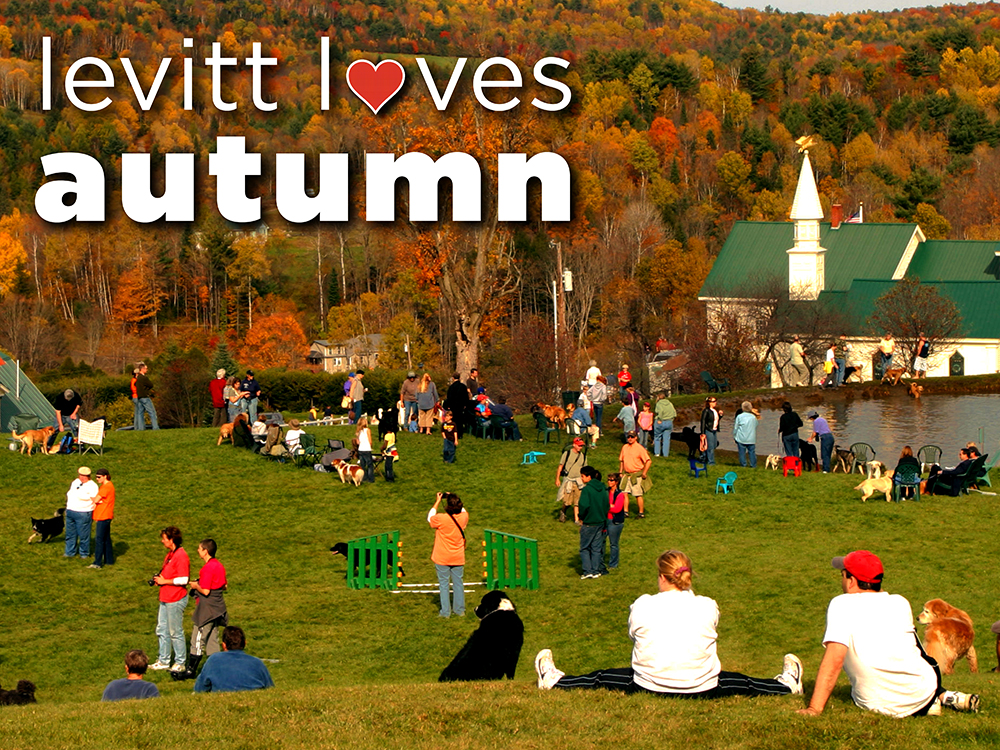Levitt Loves Autumn (small)